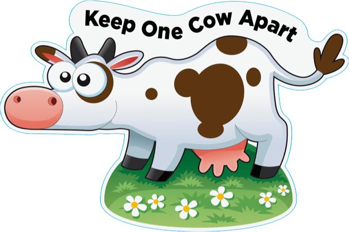 OUTDOOR S/DIS COW BODY